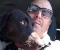 Sadie(chocolate lab 3)(service dog)