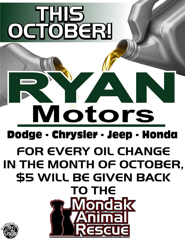 Ryan motors oil change gives back to mondak animal rescue for Ryan motors in williston nd